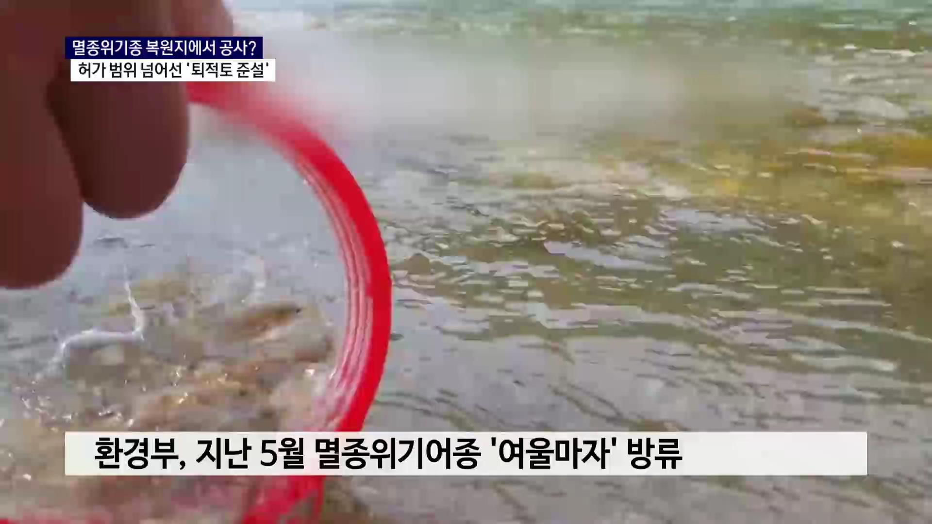 (R) 멸종위기어종 복원지에서 퇴적토 준설..허가 범위도 넘어 사진
